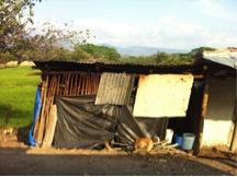 seth sully shack